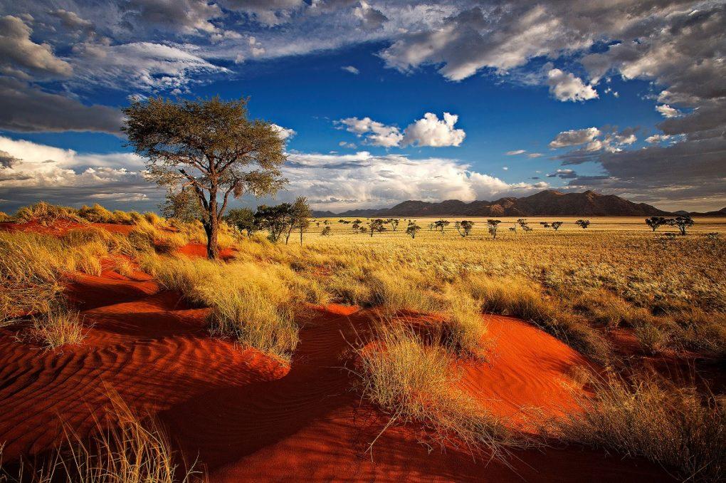 idee premi concorso di Natale - premi - viaggio Namibia